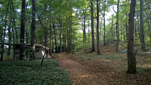Campingplatzgelände - Dauercamping3