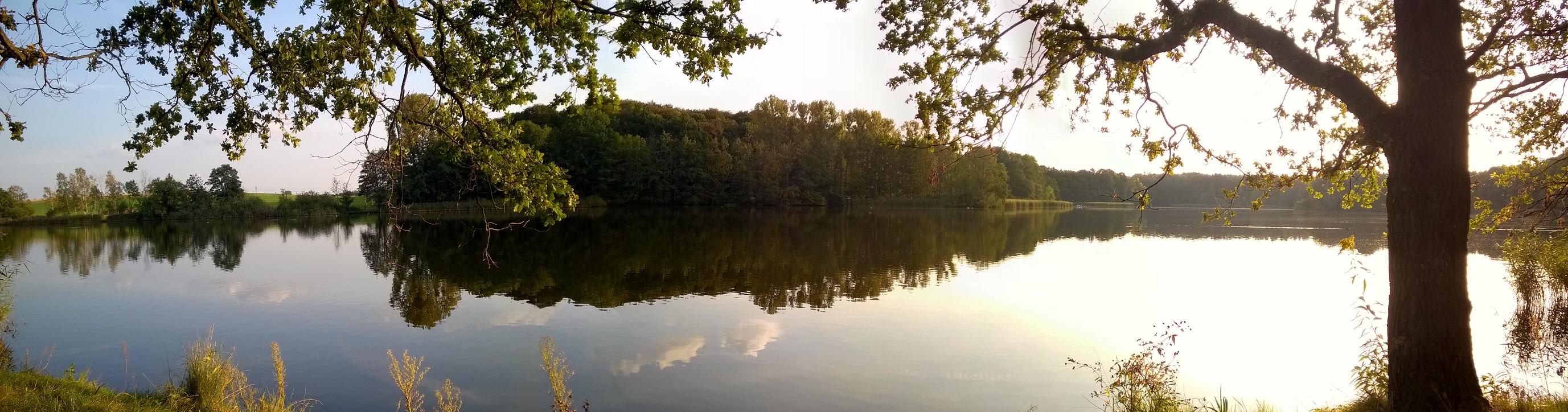 niederer Waldteich bei Dresden im Sonnenuntergang